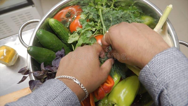 Φρέσκα ακατέργαστα λαχανικά άνοιξη συνδετήρας Χορτοφάγο υπόβαθρο τροφίμων Ντομάτες, αγγούρι, ραδίκια, φύλλα μαρουλιού στο μέταλλο στοκ φωτογραφίες