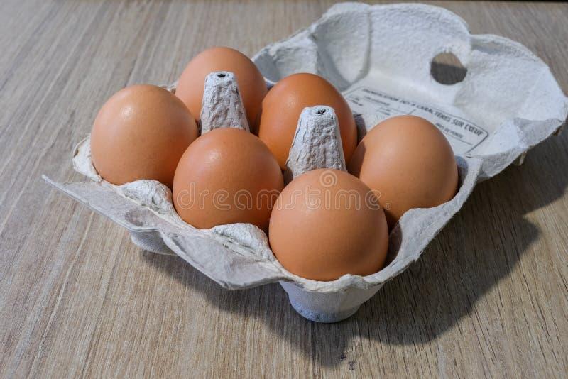 Φρέσκα αυγά από μια τοπική παραγωγή στοκ εικόνες με δικαίωμα ελεύθερης χρήσης