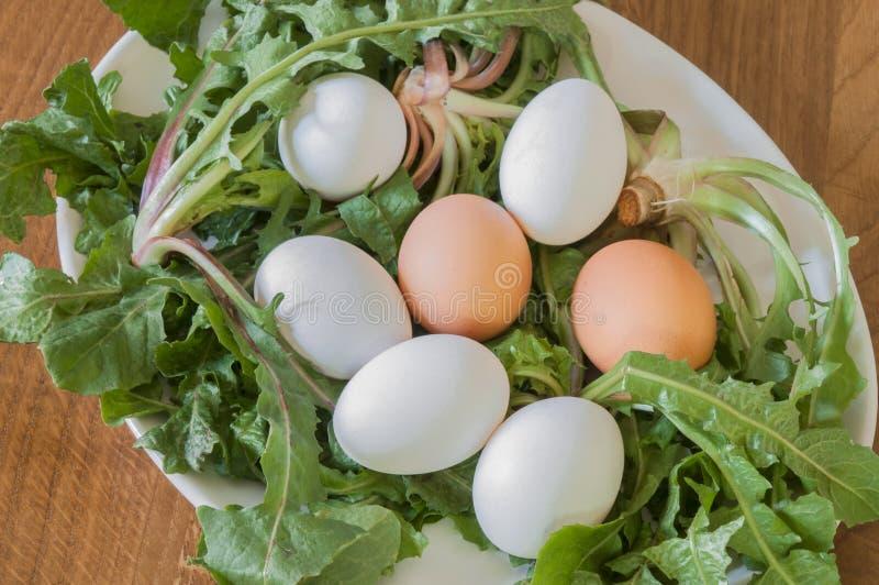 Φρέσκα αυγά και χορτάρια στοκ εικόνα