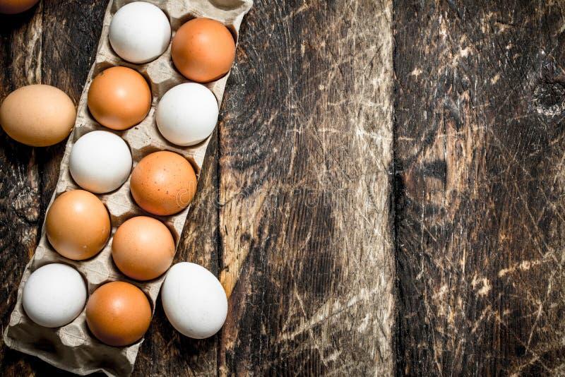 Φρέσκα αυγά σε μια κασέτα στοκ εικόνα