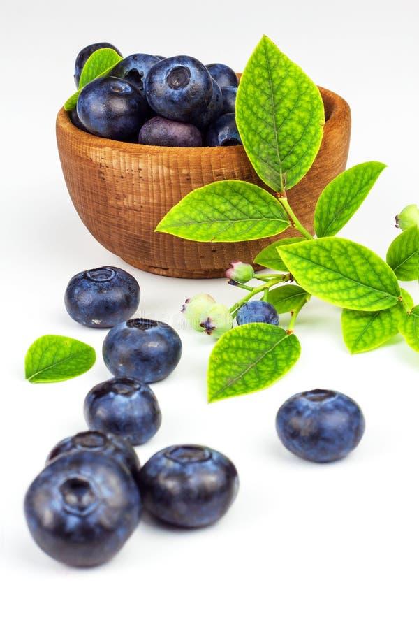 Φρέσκα βακκίνια σε ένα άσπρο υπόβαθρο Υγιή θερινά φρούτα Γούστο του καλοκαιριού Ανάπτυξη των βακκινίων Διαφήμιση στα βακκίνια στοκ φωτογραφία με δικαίωμα ελεύθερης χρήσης