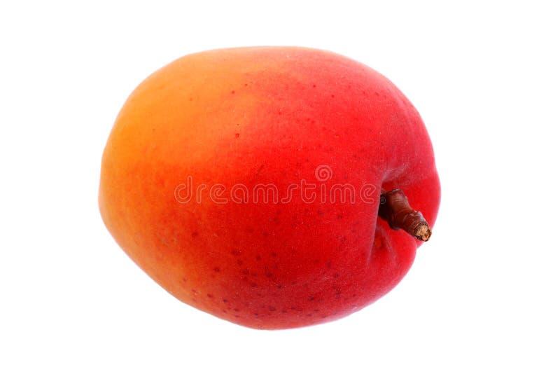 Φρέσκα βερίκοκα και ώριμα φρούτα στοκ εικόνα με δικαίωμα ελεύθερης χρήσης