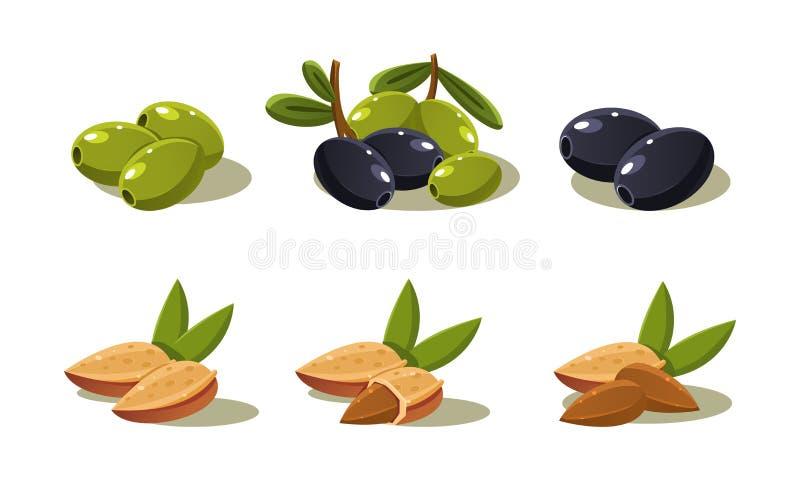 Φρέσκα ελιές και καρύδι αμυγδάλων, χορτοφάγος υγιής οργανική καθορισμένη διανυσματική απεικόνιση προϊόντων σε ένα άσπρο υπόβαθρο απεικόνιση αποθεμάτων