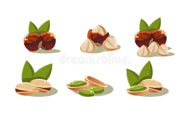 Φρέσκα ελιές και καρύδι φυστικιών, τα χορτοφάγα υγιή οργανικά προϊόντα καθορισμένα τη διανυσματική απεικόνιση σε ένα άσπρο υπόβαθ ελεύθερη απεικόνιση δικαιώματος