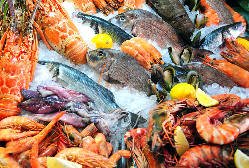 φρέσκα θαλασσινά στοκ φωτογραφίες με δικαίωμα ελεύθερης χρήσης
