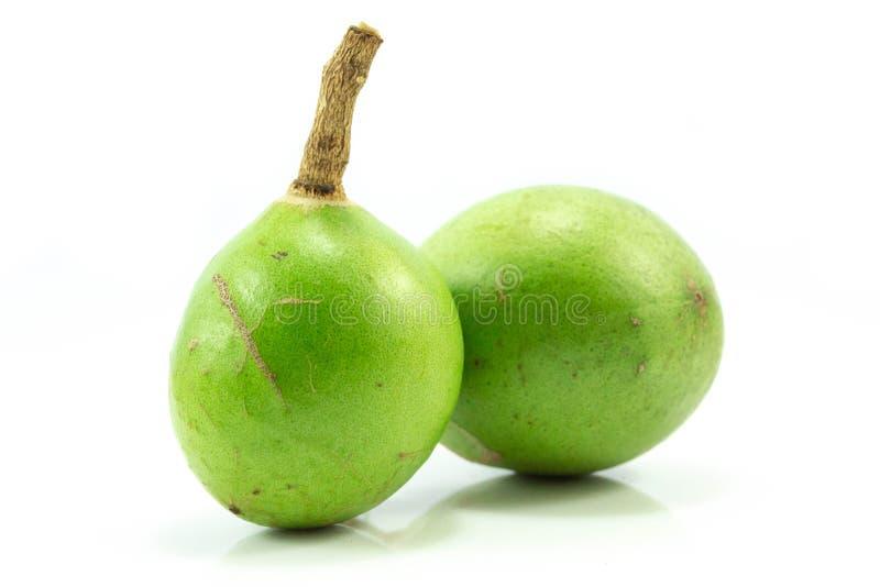 Φρέσκα ιατρικά φρούτα Bael απομονωμένος στο άσπρο υπόβαθρο στοκ εικόνα με δικαίωμα ελεύθερης χρήσης