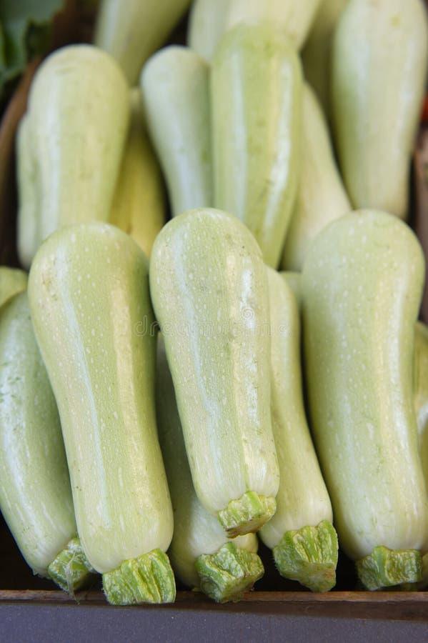 Φρέσκα καλλιεργημένα πράσινα κολοκύθια  Προσφορά στη φυτική αγορά  Θερινή κολοκύνθη στοκ φωτογραφίες