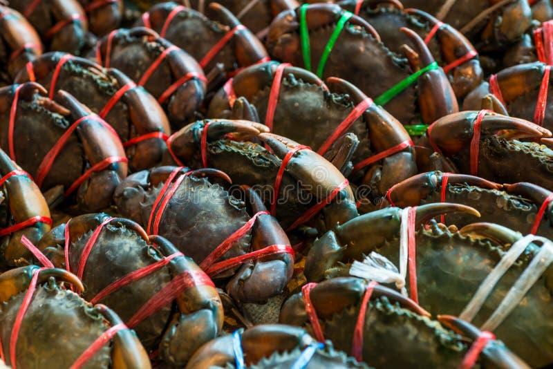Φρέσκα κομμένα οδοντωτά εύγευστα θαλασσινά καβουριών λάσπης στην αγορά στοκ εικόνες