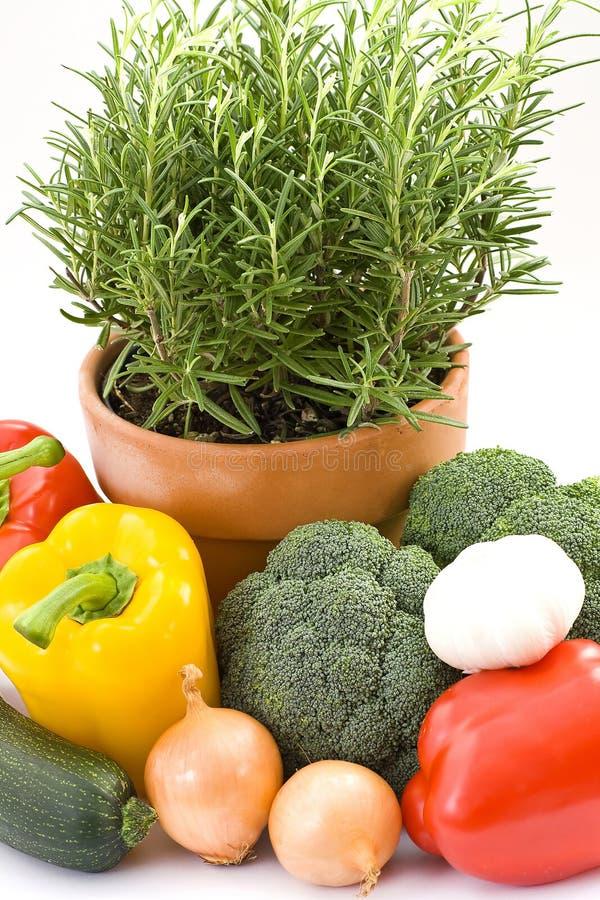 φρέσκα λαχανικά χορταριών στοκ φωτογραφία με δικαίωμα ελεύθερης χρήσης