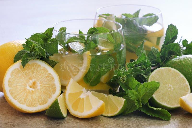 Φρέσκα λεμονάδα και λεμόνια στοκ φωτογραφίες με δικαίωμα ελεύθερης χρήσης