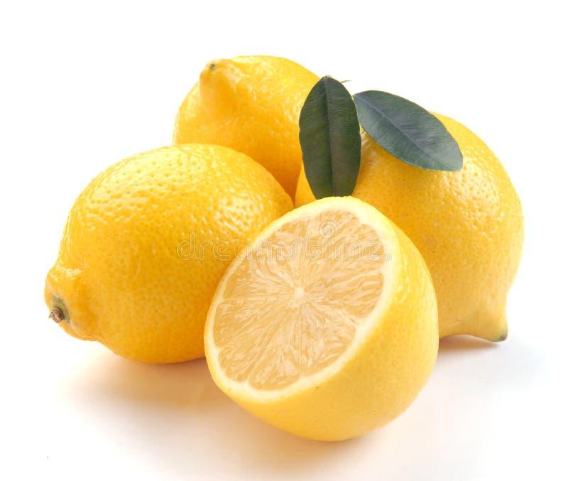 φρέσκα λεμόνια στοκ φωτογραφία με δικαίωμα ελεύθερης χρήσης