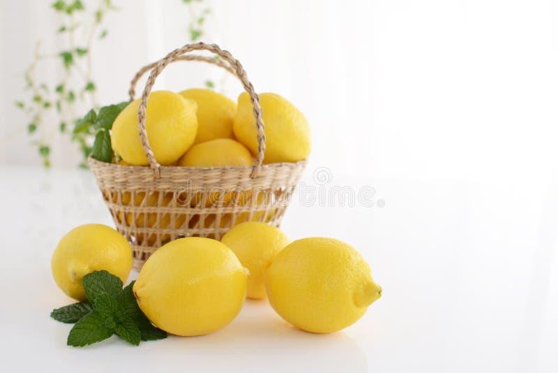 φρέσκα λεμόνια στοκ εικόνα με δικαίωμα ελεύθερης χρήσης