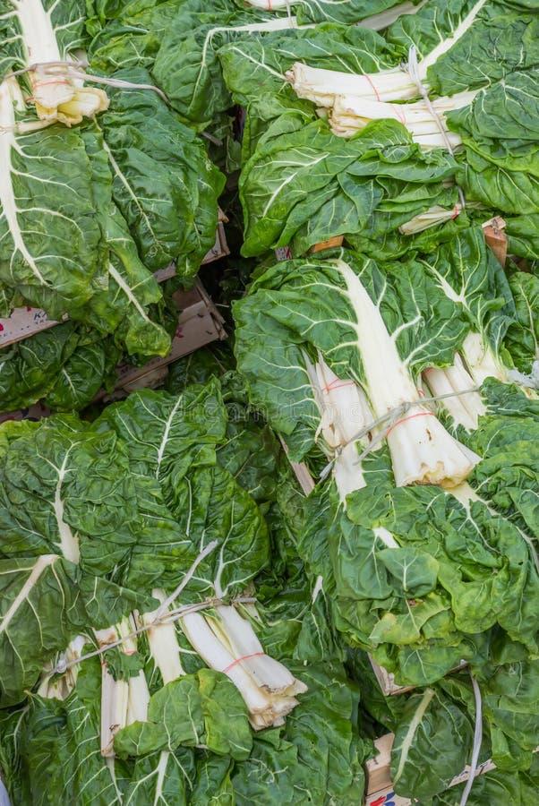 Φρέσκα οργανικά πράσινα λάχανων στοκ εικόνες