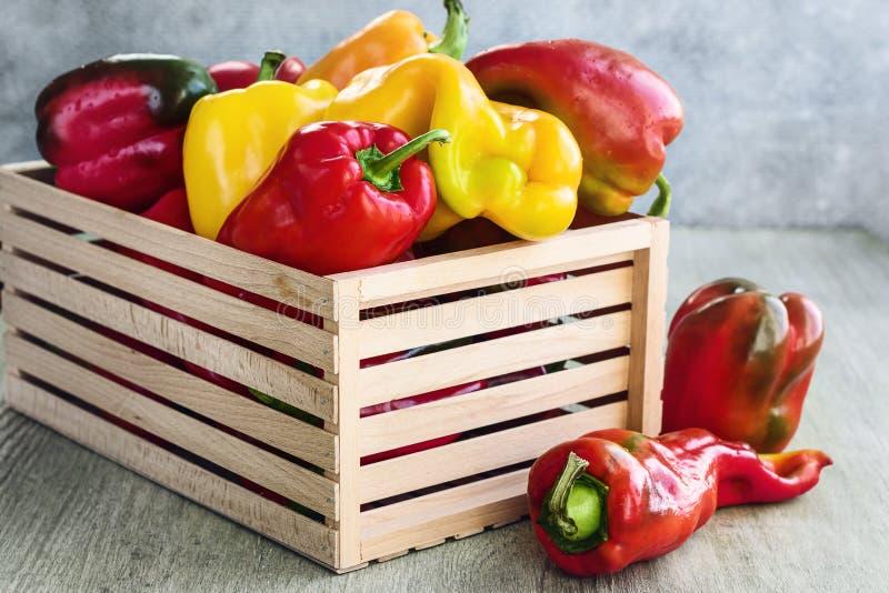 Φρέσκα πιπέρια κουδουνιών στοκ φωτογραφίες με δικαίωμα ελεύθερης χρήσης