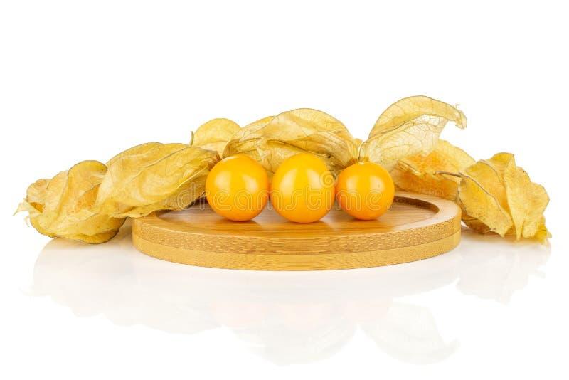 Φρέσκα πορτοκαλιά physalis που απομονώνονται στο λευκό στοκ φωτογραφία