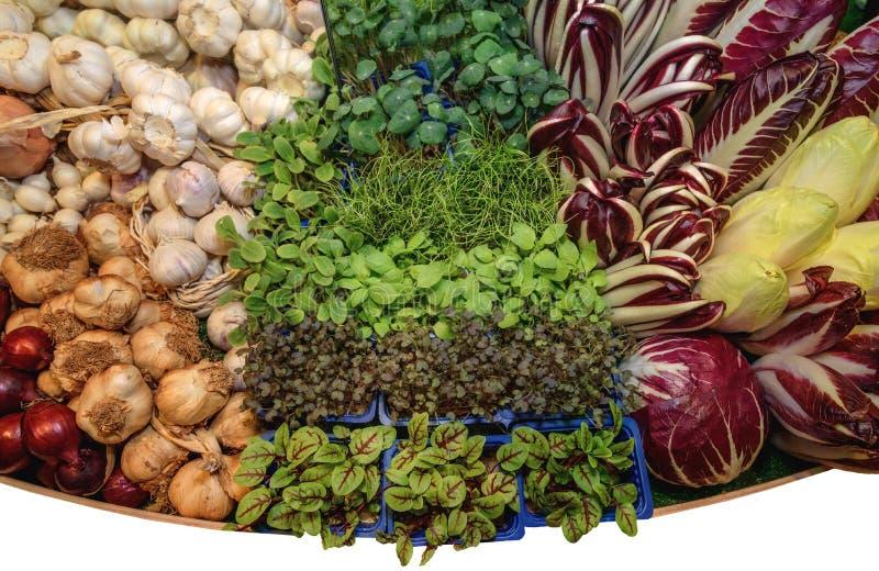 Φρέσκα πράσινα αρωματικά χορτάρια, σκόρδο, λάχανο, κρεμμύδι, σαλάτα ραδικιού, σαλάτα radicchio, γαλλικό αντίδι Έννοια της υγιούς  στοκ φωτογραφία