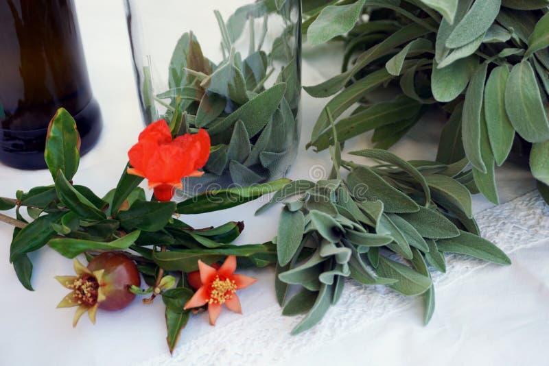 Φρέσκα πράσινα λογικά φύλλα που προετοιμάζονται για την κατασκευή του εμποτισμένου ελαίου ή του τσαγιού στοκ εικόνες