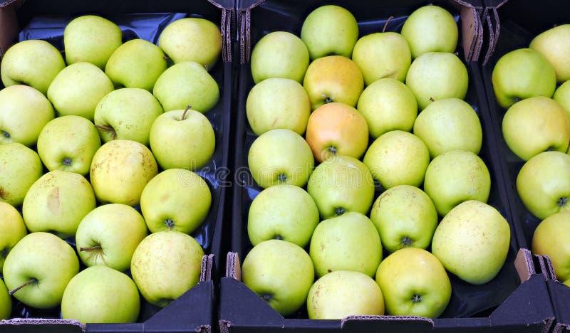 Φρέσκα πράσινα μήλα για την πώληση στην αγορά στοκ φωτογραφία με δικαίωμα ελεύθερης χρήσης