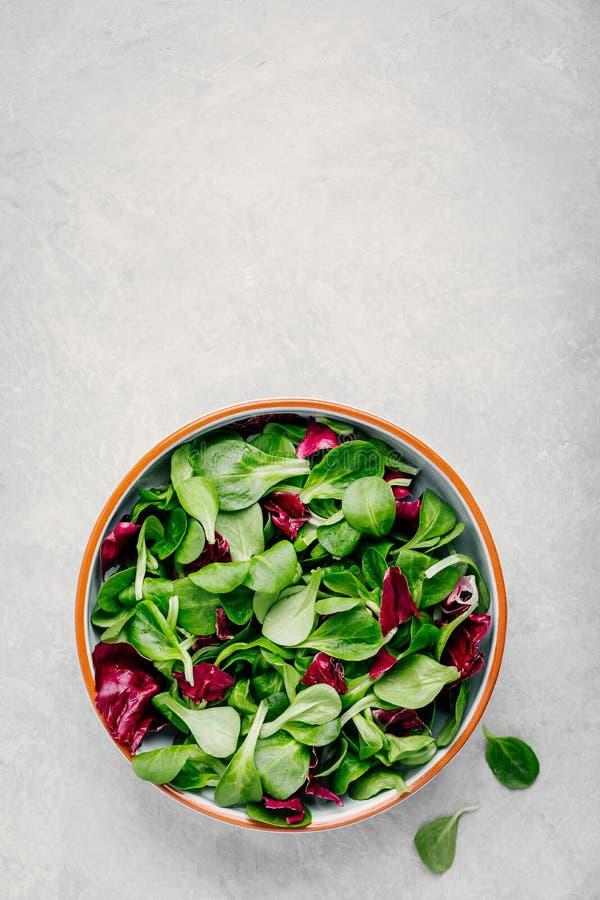 Φρέσκα πράσινα μικτά φύλλα σαλάτας στο κύπελλο με το radicchio και τη Λοκούστα Βαλεριάνα στοκ εικόνες με δικαίωμα ελεύθερης χρήσης