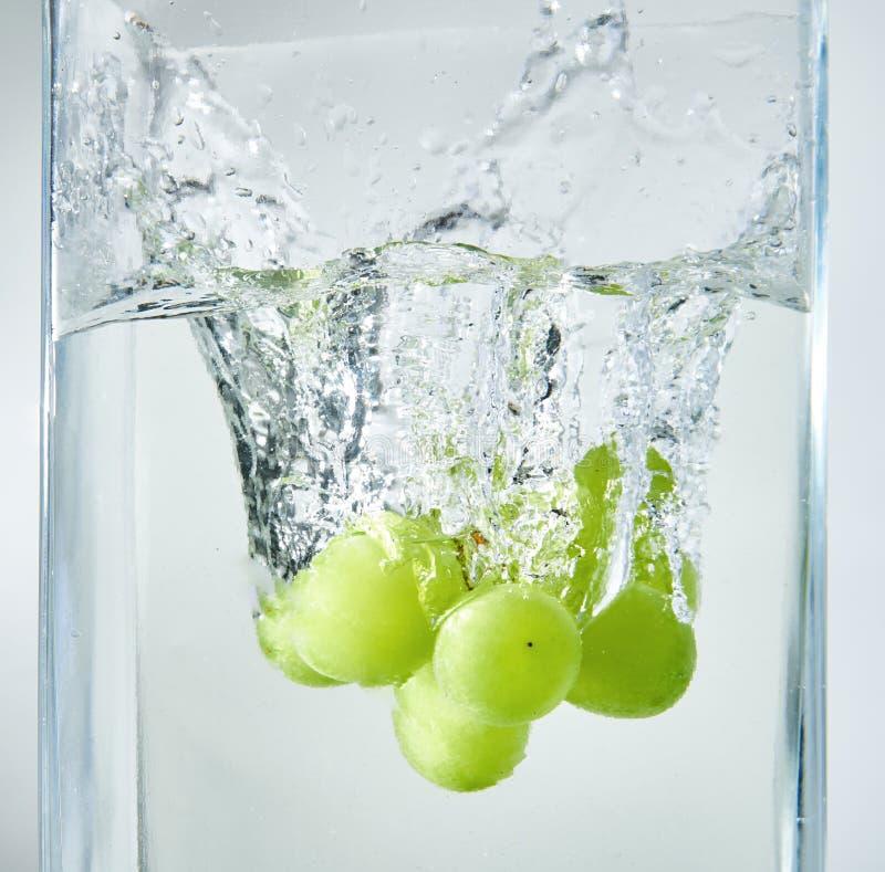 Φρέσκα πράσινα σταφύλια που καταβρέχουν στο νερό στοκ εικόνες
