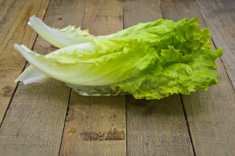 Φρέσκα πράσινα φύλλα μαρουλιού, ιδανικά για τη διατροφή στοκ φωτογραφίες