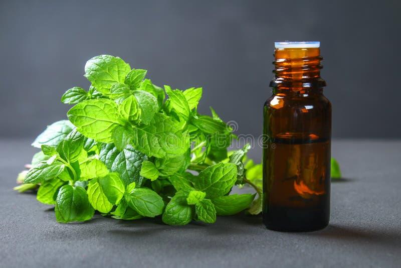 Φρέσκα σπιτικά πράσινα peppermint και βούτυρο σε ένα μικρό μπουκάλι γυαλιού σε έναν γκρίζο σκοτεινό συγκεκριμένο πίνακα στοκ εικόνες