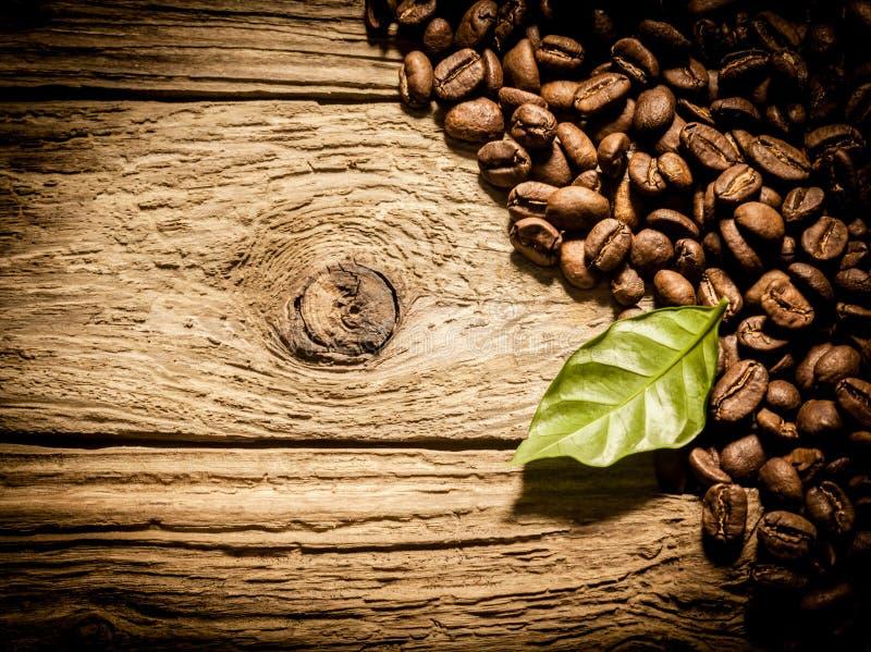 Φρέσκα φασόλια καφέ ψητού ξεπερασμένος driftwood στοκ εικόνα με δικαίωμα ελεύθερης χρήσης