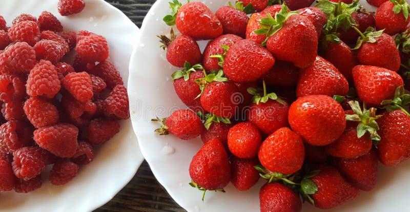 Φρέσκα φράουλες και σμέουρα στα άσπρα πιάτα στοκ εικόνες