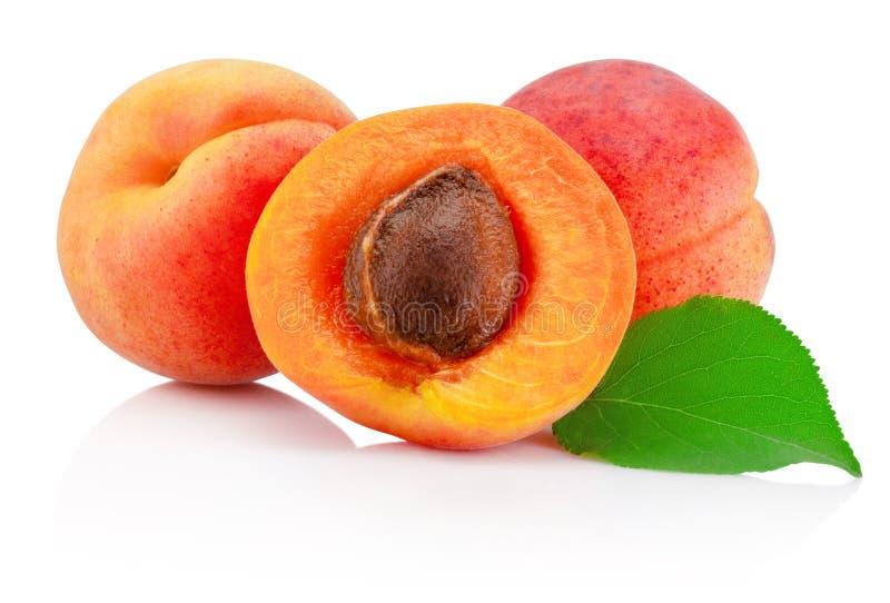 Φρέσκα φρούτα βερίκοκων περικοπών με το φύλλο που απομονώνεται στο άσπρο υπόβαθρο στοκ εικόνες