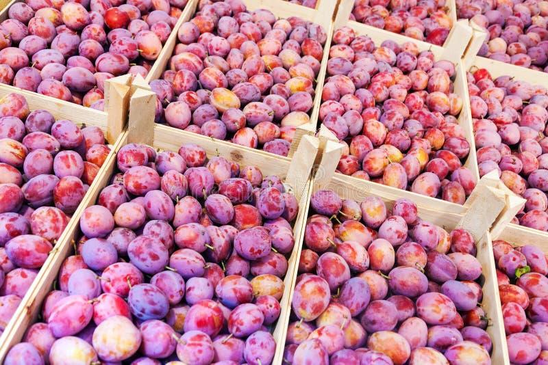 Φρέσκα φρούτα δαμάσκηνων στα ξύλινα κιβώτια για την πώληση στην αγορά στοκ φωτογραφία