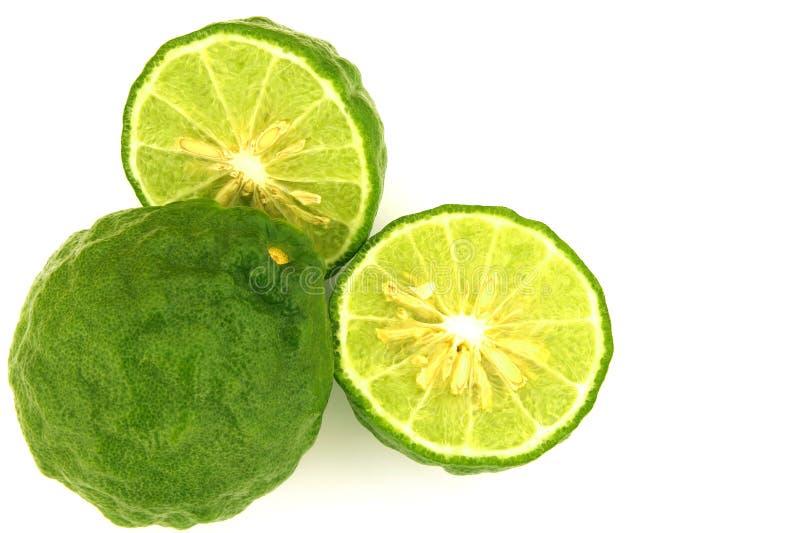 Φρέσκα φρούτα κίτρων στο άσπρο υπόβαθρο με το διάστημα αντιγράφων στοκ εικόνες