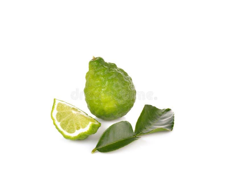 Φρέσκα φρούτα κίτρων στο άσπρο υπόβαθρο στοκ φωτογραφία με δικαίωμα ελεύθερης χρήσης