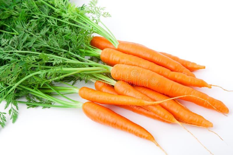 Φρέσκα φρούτα καρότων στοκ φωτογραφίες με δικαίωμα ελεύθερης χρήσης