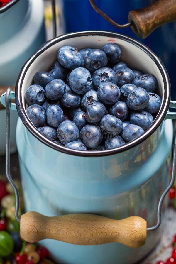Φρέσκα φρούτα μούρων στο καρδάρι στοκ φωτογραφίες