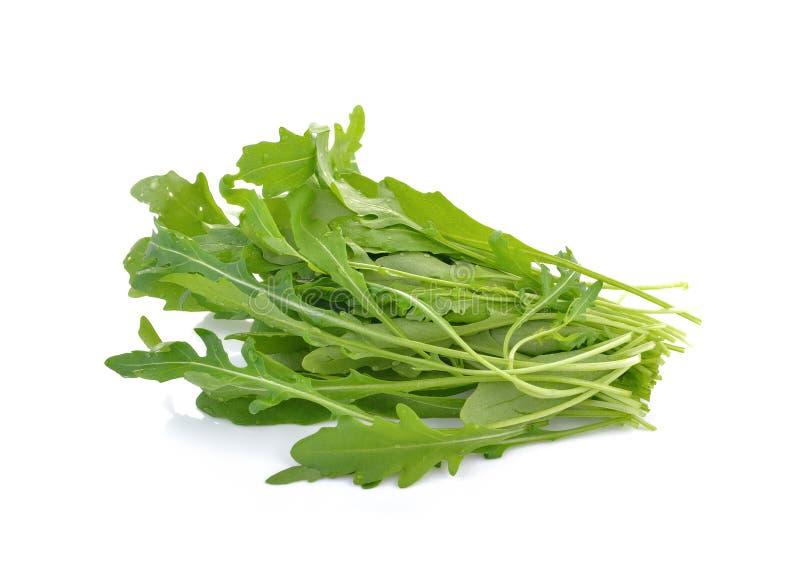Φρέσκα φύλλα μαρουλιού πυραύλων ή γλυκιά σαλάτα rucola που απομονώνονται στο άσπρο β στοκ φωτογραφίες