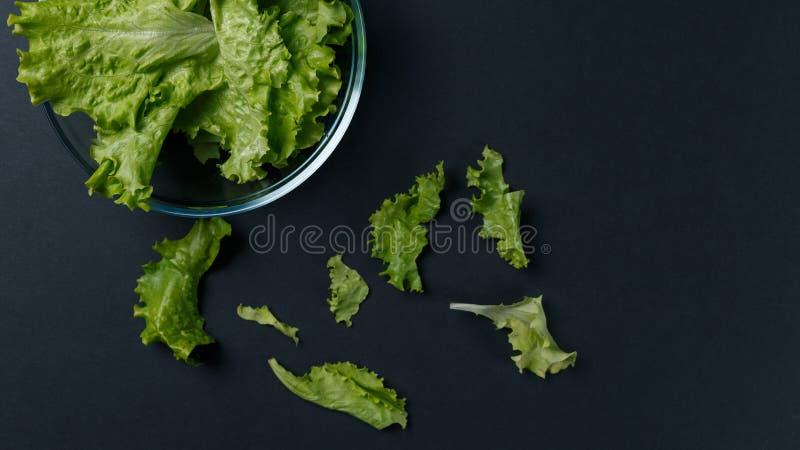Φρέσκα φύλλα σαλάτας στο κύπελλο στο σκοτεινό υπόβαθρο στοκ φωτογραφία με δικαίωμα ελεύθερης χρήσης