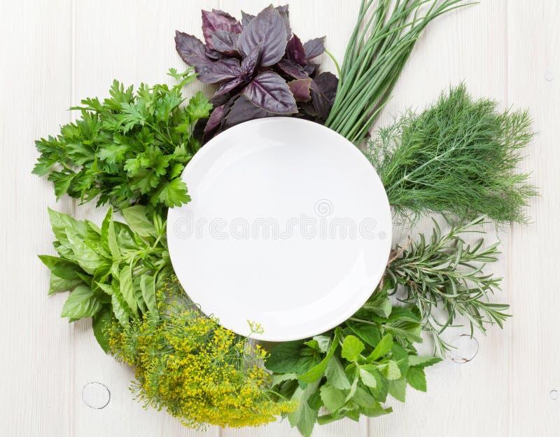 Φρέσκα χορτάρια κήπων και κενό πιάτο στοκ εικόνα