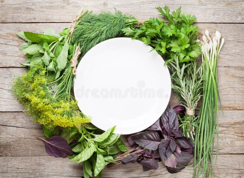 Φρέσκα χορτάρια κήπων και κενό πιάτο στοκ φωτογραφία με δικαίωμα ελεύθερης χρήσης