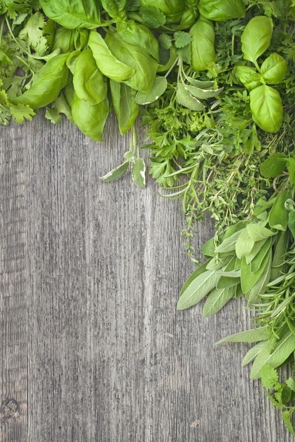 Φρέσκα χορτάρια πέρα από γκρίζο ξύλινο στοκ εικόνα με δικαίωμα ελεύθερης χρήσης