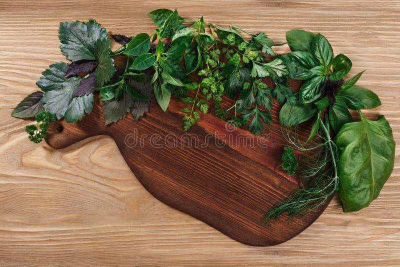 Φρέσκα χορτάρια στο ξύλινο cutboard στοκ φωτογραφία με δικαίωμα ελεύθερης χρήσης