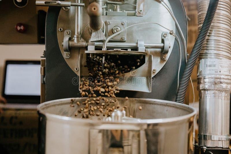 Φρέσκα ψημένα φυσικά φασόλια καφέ που πέφτουν απότομα από τη βιομηχανική Roaster φασολιών καφέ μηχανή μέσα στη καφετερία στοκ εικόνες