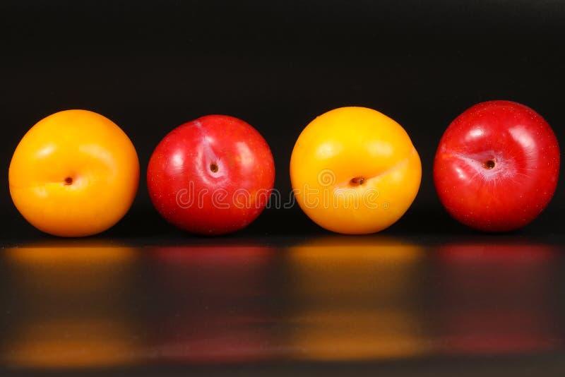 Φρέσκα ώριμα φρούτα δαμάσκηνων στοκ εικόνες