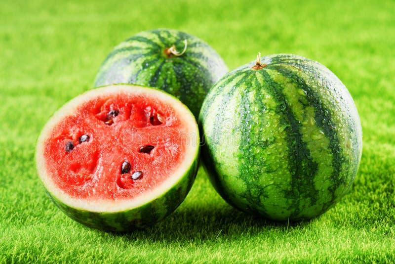 Φρέσκα ώριμα juicy υγρά καρπούζια στην πράσινη χλόη Τρόφιμα Eco στοκ φωτογραφίες με δικαίωμα ελεύθερης χρήσης
