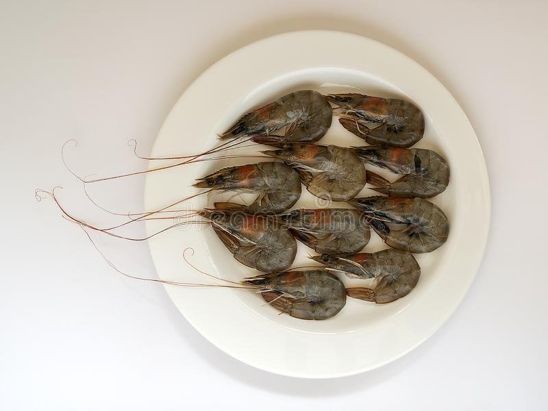 Φρέσκες άψητες γαρίδες βασιλιάδων σε ένα άσπρο πιάτο σε ένα άσπρο υπόβαθρο Τα νόστιμων και υγιών θαλασσινά λιχουδιών, κλείνουν επ στοκ εικόνα με δικαίωμα ελεύθερης χρήσης