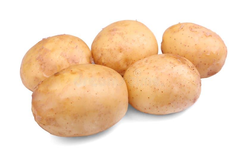 Φρέσκες, ακατέργαστες και άψητες πατάτες, που απομονώνονται σε ένα άσπρο υπόβαθρο Θρεπτικά και φυσικά φυτικά φρέσκα τρόφιμα γεωργ στοκ εικόνα με δικαίωμα ελεύθερης χρήσης