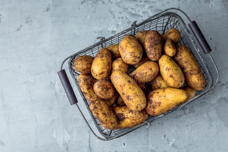 Φρέσκες βιο πατάτες στην γκρίζα κινηματογράφηση σε πρώτο πλάνο υποβάθρου στοκ εικόνα
