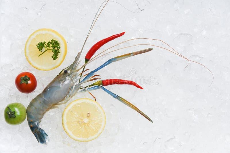 Φρέσκες γαρίδες γαρίδων στις ακατέργαστες γαρίδες πάγου με το λεμόνι ντοματών τσίλι και την πράσινη τοπ άποψη μαϊντανού στοκ εικόνες