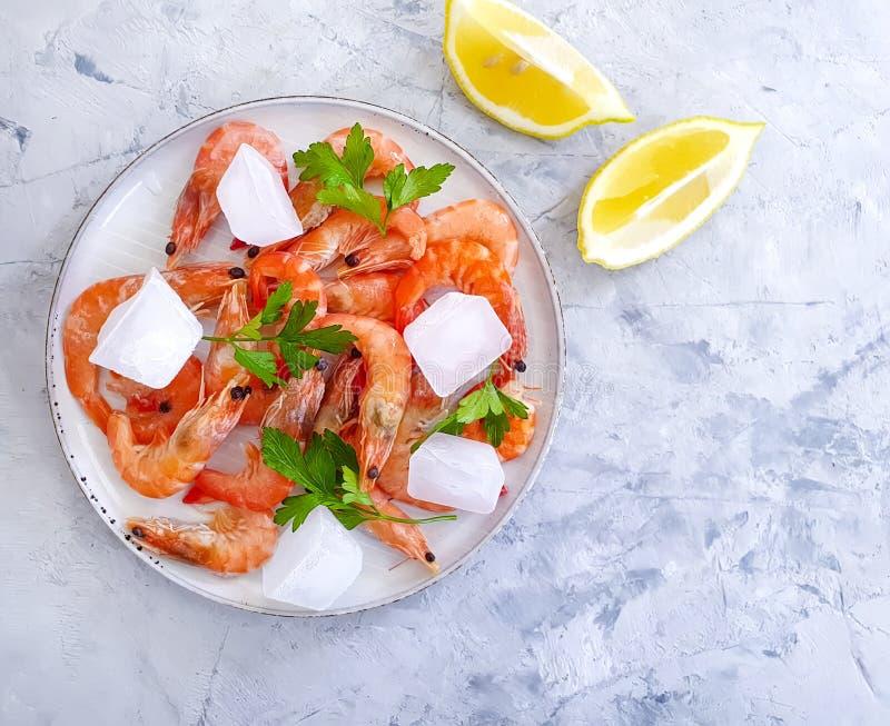 Φρέσκες γαρίδες, πάγος, μεσογειακό λεμόνι συστατικών πιάτων τροφίμων γαστρονομίας σε ένα γκρίζο συγκεκριμένο υπόβαθρο στοκ εικόνες