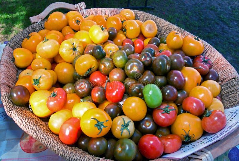 Φρέσκες εγχώριο ντομάτες αγοράς αγροτών στοκ εικόνες