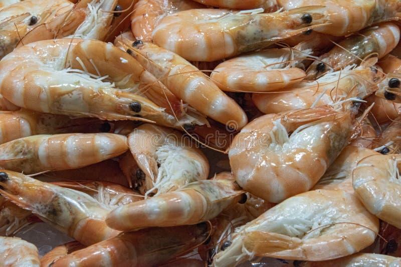 φρέσκες μαγειρευμένες γαρίδες τιγρών στοκ φωτογραφίες με δικαίωμα ελεύθερης χρήσης